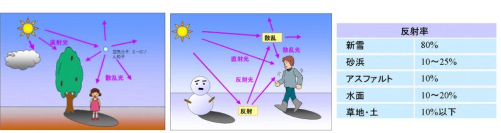 紫外線の反射